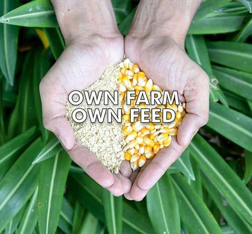 Own Farm Own Feed